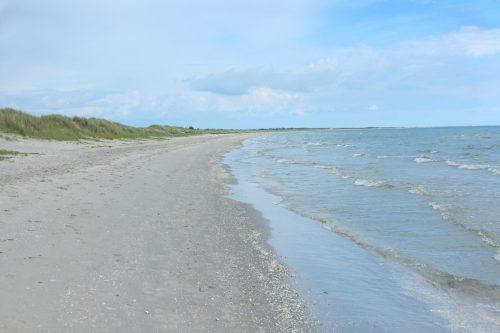 Ålbaek Denmark beach coast water baltic