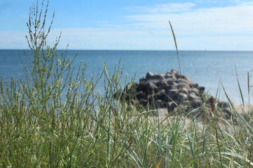 Denmark saeby marina