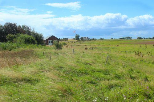 island denmark skarø grass field coast green sky